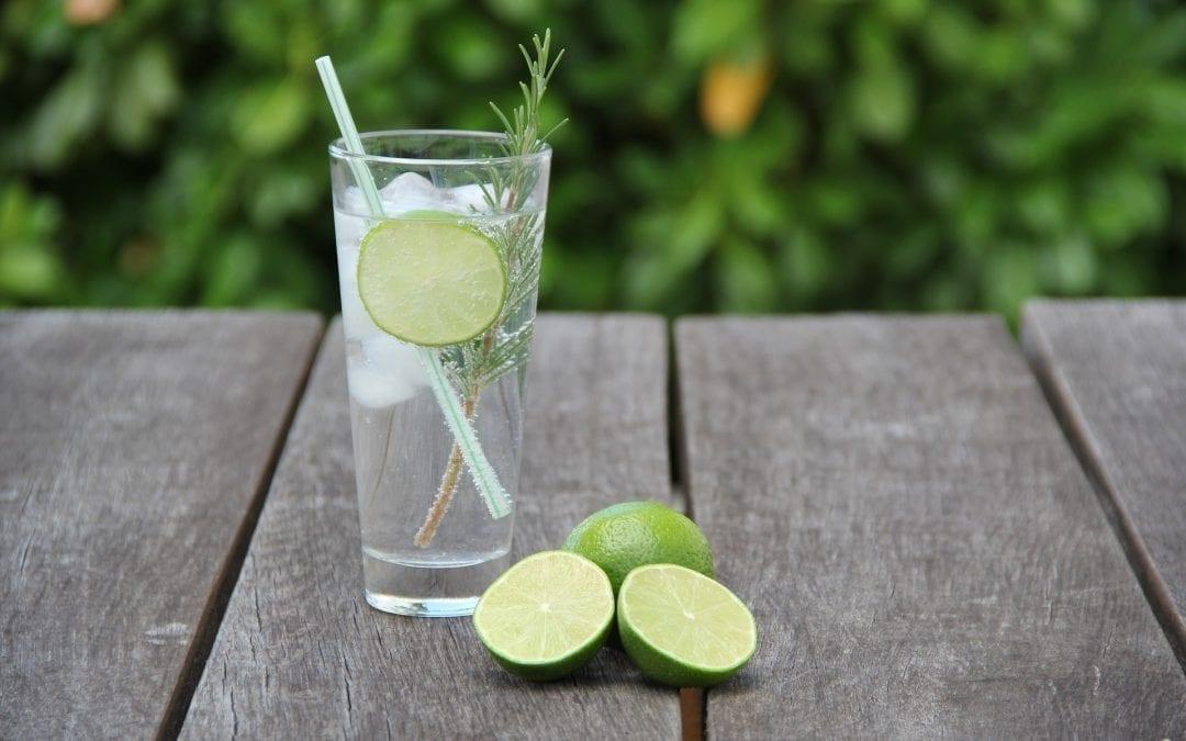 Meet The Maker – The Gin Distiller